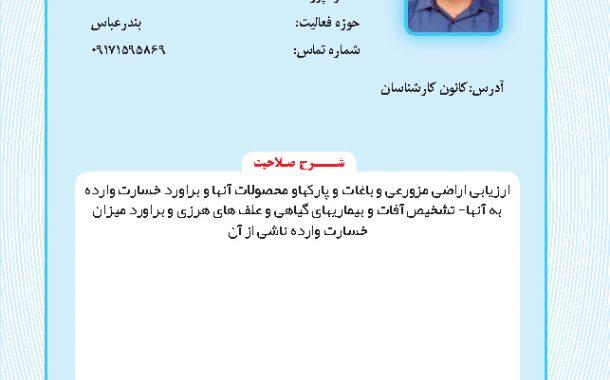 حمید دولتی